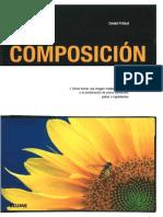 COMPOSICION.pdf