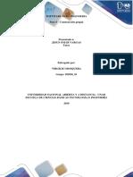 paso_4_trabajo_colaborativo_Grupo_81.docx