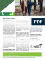 tecnico_veterinario_y_pecuario.pdf