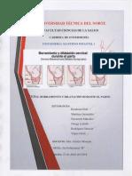 Borramiento y Dilatación