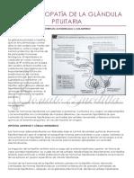 Endocrinopatía de La Glándula Pituitaria