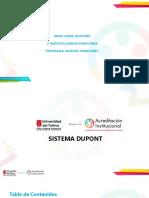 Presentación  sistema Dupont