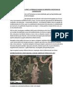 DEFORESTACIÓN EN EL PERÚ.docx