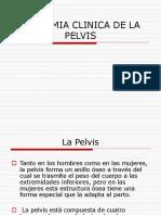 ARMA DE FUEGO (1)