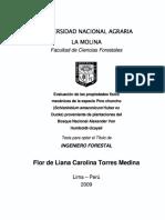 TESIS scizolobium amazonicum.pdf