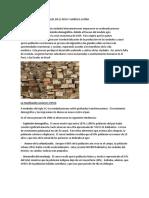 CAMBIOS SOCIALES EN EL.docx
