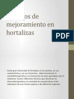 Métodos de Mejoramiento en Hortalizas