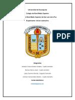 Experimento de Feria de Ciencias 2019 - Escuadrón de Operaciones Grupales de Trabajo.docx