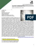 ENSAYO PCA_3_claves.docx
