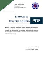 Proyecto 1 FluidosII v2 ESTE ES.docx