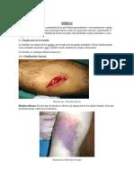 HERIDAS Y HEMORRAGIAS EN APU.docx