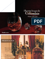 brief revista camila Eraso.pdf