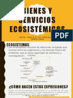 EBRN - Teoría 03.pptx
