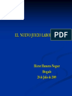 JUICIO_LABORAL_2009.pdf