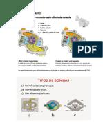 BOMBAS DE LUBRICANTES.docx