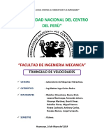 TRIANGULO-DE-VELOCIDADES.docx