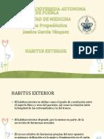 habitusexterno-161103201430.pdf