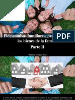 Ibrahim Velutini Sosa - Fideicomisos Familiares, Protección de Los Bienes de La Familia, Parte II