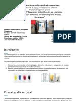 Cromatografía en Papel