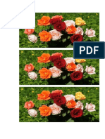 mawar 108