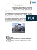 Dia 19.  CONTAMINACION VISUAL.docx