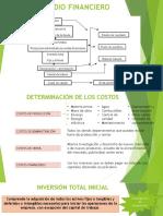Formulación de Proyectos.