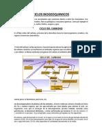 CICLOS_BIOGEOQUIMICOS[1].docx