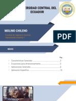 Molino-Chileno presentacion.pptx