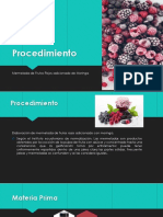 Procedimiento.pptx