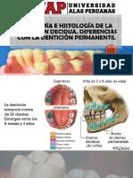 Dentición temporal
