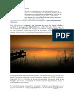 PLATAFORMA DE ABRASION.docx
