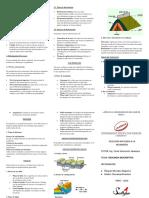 TRIPLICO GEOLOGIA ESTRUCTURAL.docx