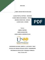 244920332-INFORME-LABORATORIO-COLABORATIVO.docx