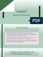 Estructura y Funcionamiento UNMDP