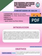 9. AGENTES COMUNITARIOS DE SALUD.pptx