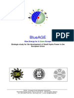 BlueAge.pdf