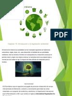 Guía de Ambiente y Sustentabilidad Contestada