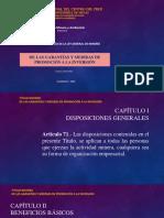 De las garantías y medidas de promoción a la inversión.pptx