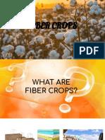 Fiber crops presentation