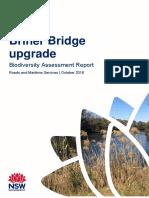 briner-bridge-ref-biodiversity-assessment-report.pdf