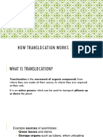 How Translocation Works