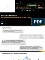 SAP-cloud-platform.pdf