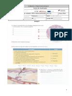 TESTE nº1 -2º Módulo- 10ºPTAS 2018-2019.docx
