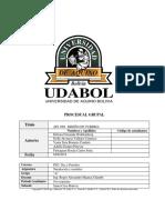 PROCESUAL API.docx