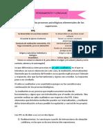RESUMEN PENSAMIENTO Y PALABRA 4 5 6 7.docx