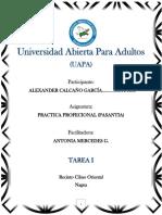 TAREA I.docx