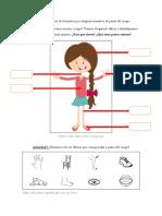 Categoría Semántica de Partes Del Cuerpo - Niña