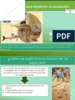 1° teorias de evolución unidad 1  L-2