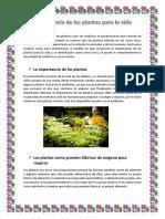 Importancia de las plantas para la vida.docx