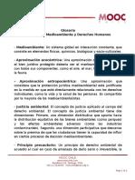 Comentario General N 15 Del Comit de Derechos Econ Micos Sociales Y Culturales de La ONU